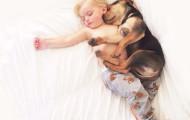 В чем опасность домашних животных для ребенка?