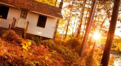 Осенние работы на даче