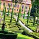 Топиарий для вашего сада