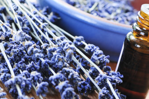 натуральные репелленты против насекомых